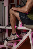 Sporty Legs Calf. Bodybuilders Legs Shot In A Gym In Workout Stock Images