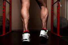 Sporty Legs Calf. Muscular Bodybuilder's Legs Shot In A Gym After workout Stock Photo