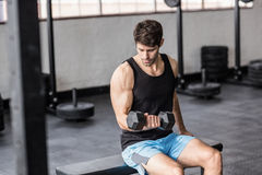 Sporty man exercising with dumbbells Stock Photo