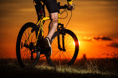 Sporty Man Riding a Bicycle on the Country Road. Stock Photo