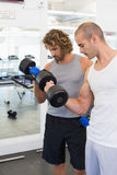 Sporty men exercising with dumbbells in gym Royalty Free Stock Image