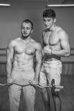 Sporty obsługują w gym Fotografia Royalty Free