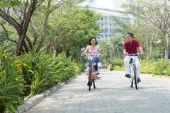 Sporty seniors. Copy-spaced image of sporty seniors riding bicycles in the park royalty free stock image