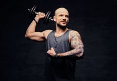 Sporty shaved head tattooed male doing shoulder workout with dumbbell. Athletic shaved head tattooed male doing shoulder workout with dumbbell Stock Image