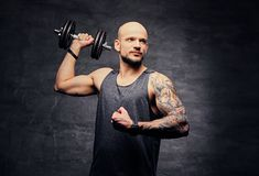 Sporty shaved head tattooed male doing shoulder workout with dumbbell. Athletic shaved head tattooed male doing shoulder workout with dumbbell Royalty Free Stock Image