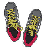 Sporty shoes royalty free illustration