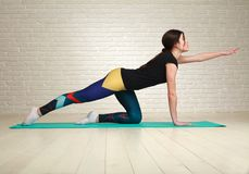 Sporty slim woman doing fitness exercises in studio on brick. Sporty slim woman doing fitness exercises in the studio on a brick wall background Stock Photography