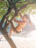 Sporty slim young woman wearing bikini climbing tree on a sandy beach at resort. Smiling caucasian brunette girl hanging. Sporty slim young woman wearing bikini Stock Photography