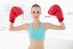 Sporty stern woman holding up boxing gloves Royalty Free Stock Images
