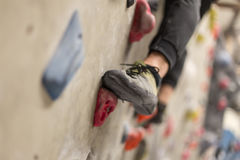 Sporty woman in boulder climbing hall Royalty Free Stock Photography