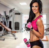 Sporty woman with dumbbells in gym. Attractive sporty woman with dumbbells in gym Stock Image