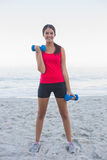 Sporty woman exercising with dumbbells Royalty Free Stock Image