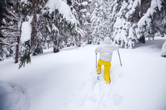 Sporty woman goes on snowshoes. Back view Stock Photography
