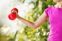Sporty woman hands with light red dumbbells Royalty Free Stock Photography