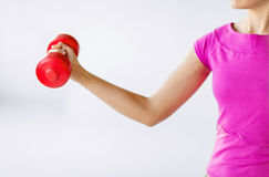 Sporty woman hands with light red dumbbells Royalty Free Stock Images