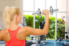 Sporty woman with heavy steel dumbbell from back Stock Photos
