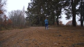 Sporty woman jogging with dog in autumn forest stock footage