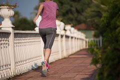 Sporty woman jogging Stock Photography