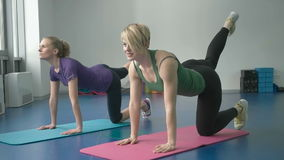 Sporty women doing gymnastic exercises or exercising in fitness class.  stock video footage