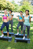 Sporty women doing step aerobics with dumbbells Stock Photo