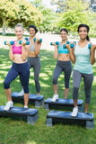Sporty women doing step aerobics in park Royalty Free Stock Photography