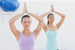 Sporty women with joined hands in fitness studio Stock Images