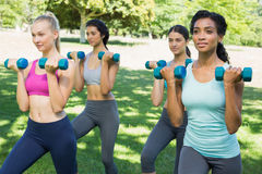 Sporty women lifting weoghts Royalty Free Stock Photos