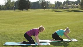 Sporty women performing yoga exercises outdoors. Charming fitness senior women doing pigeon asana yoga exercise on park lawn while sitting on exercise mat stock footage