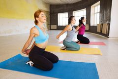 Sporty women stretching arms during group workout Stock Photos