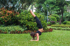 Sporty young woman doing handstand exercise with bending legs on grass in park. Fit girl practicing yoga outdoors. Stock Photo