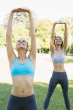 Sporty young women exercising Stock Images