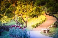 Sposób chodzić w ogródzie obrazy royalty free