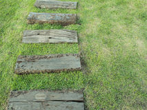 Sposób drewno na trawie Fotografia Royalty Free