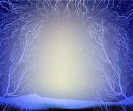 Sposób głęboki czarodziejski mroźny zima las, cienie, rozgałęzia się sylwetkę, ilustracji