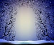 Sposób głęboki czarodziejski mroźny zima las, cienie, rozgałęzia się sylwetkę, noc ilustracji