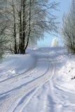 sposób krajobrazowa zima Zdjęcia Stock