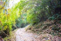 Sposób na górze dla trekking fotografia royalty free