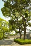 Sposób Osaka kasztel Osaka kasztel jest jeden Japan?s najwi?cej s?awnych punkt?w zwrotnych zdjęcie stock