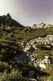 Sposób Popradske Pleso wysoki Tatras, Vysoke - Tatry - Zdjęcie Royalty Free