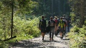 Sposób wierzchołek wysokie Tatrzańskie góry obraz royalty free