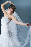 Sposa bella Immagine Stock Libera da Diritti