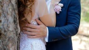 Sposa caucasica e sposo che posano nel legno di pino stock footage