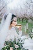 Sposa con un bicchiere di vino Immagine Stock