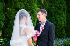 Sposa da governare sotto il velo Immagini Stock Libere da Diritti