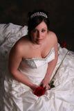 Sposa del Virgin Fotografie Stock