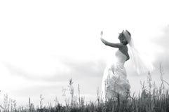 Sposa di angelo da cielo Fotografia Stock Libera da Diritti