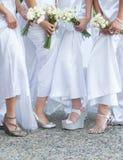 Sposa e damigelle d'onore Fotografie Stock
