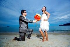Sposa e sposo Fotografia Stock Libera da Diritti