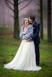 Sposa e sposo al giorno delle nozze immagine stock