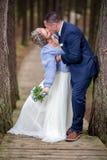 Sposa e sposo al giorno delle nozze fotografie stock libere da diritti